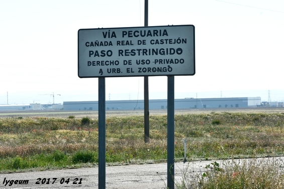 Cañada Real de Castejón