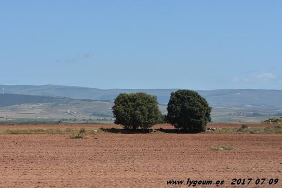 Tierras de Soria